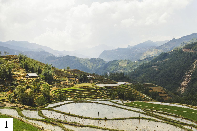 photo de paysage par maggieboucherphoto lors d'un voyage au vietnam.